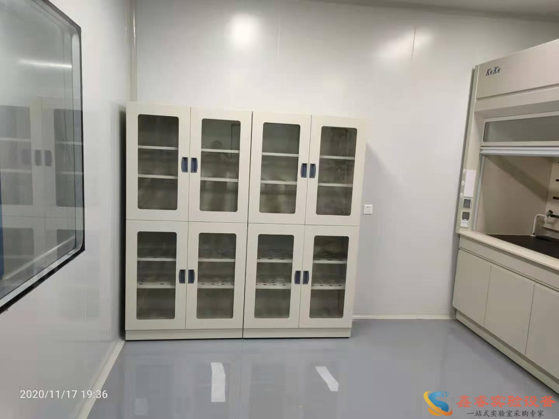 不锈钢药品柜/试剂柜
