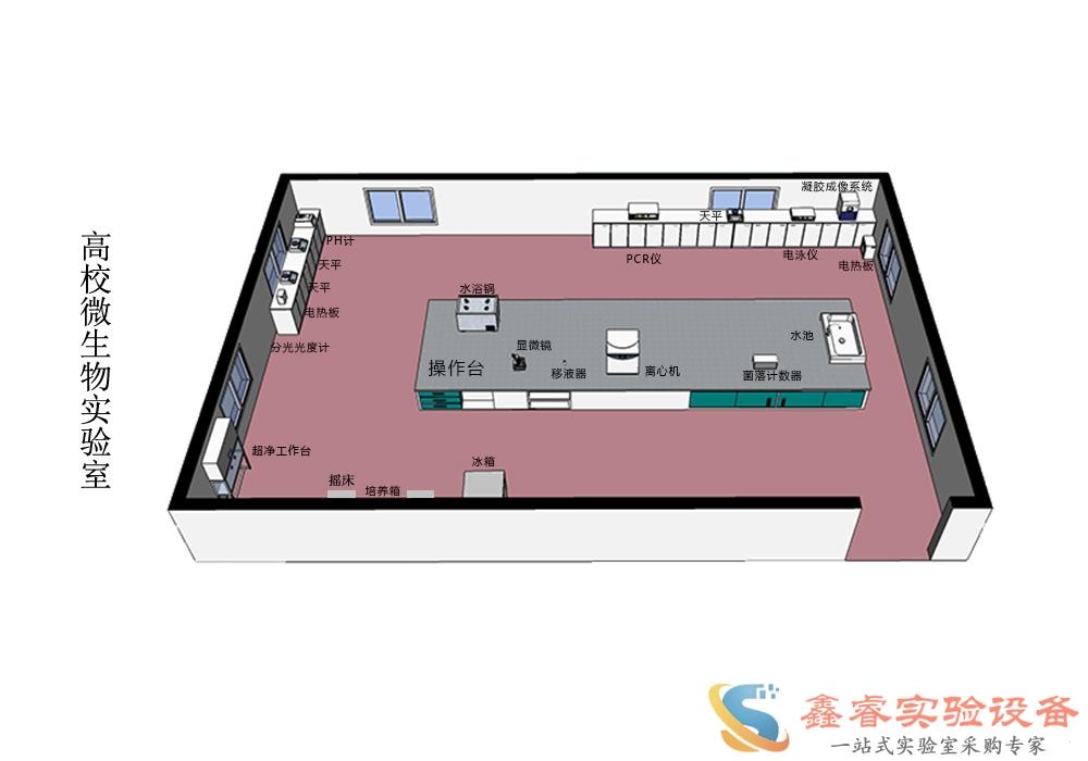 定制微生物实验室,微生物实验室装修说明SR7016